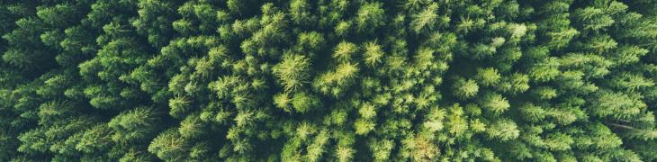 Diminution de l'empreinte carbone chez Digitaleo 2