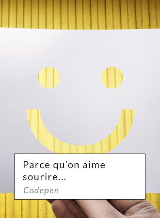 Parce qu'on aime sourire.... Codepen