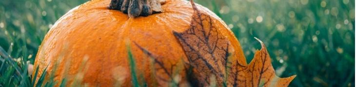 Exemple Halloween